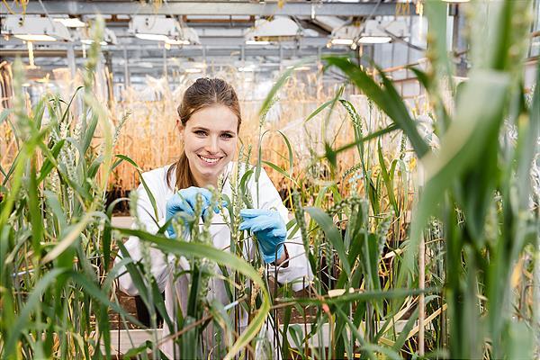 Bio Data Science – neuer Master-Studiengang als Schnittstelle zwischen High-Tech & Natur